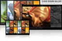 Flash Fusion Gallery DW Extension 1.0.0