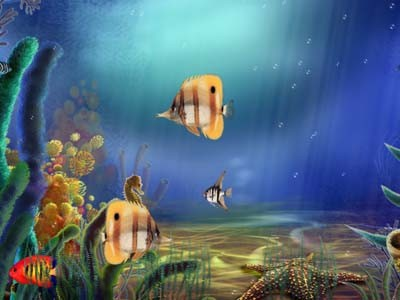 Animated Aquarium Screensaver Download