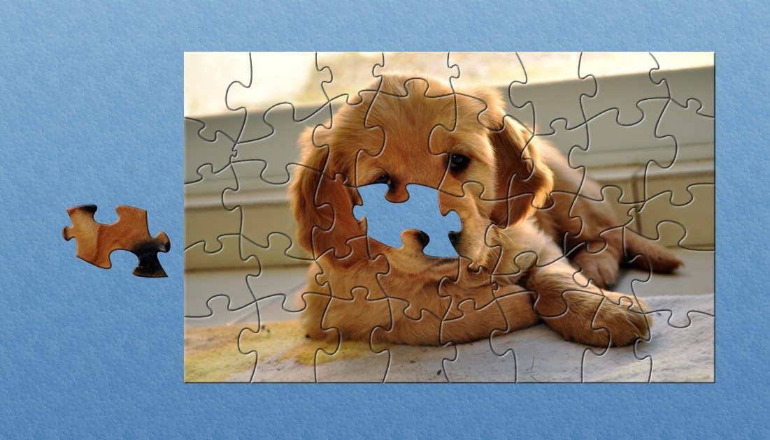 Screenshot Review Downloads Of Freeware Bs Dog Puzzle Game