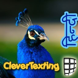 CleverTexting Hindi Download
