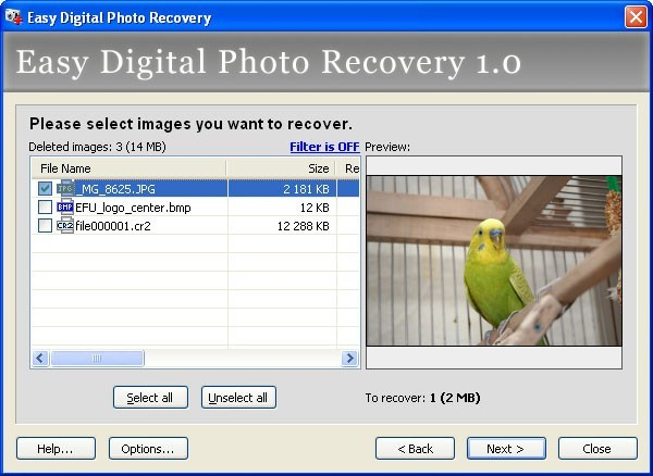 Easy Digital Photo Recovery Download