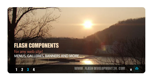 Flash Banner Download