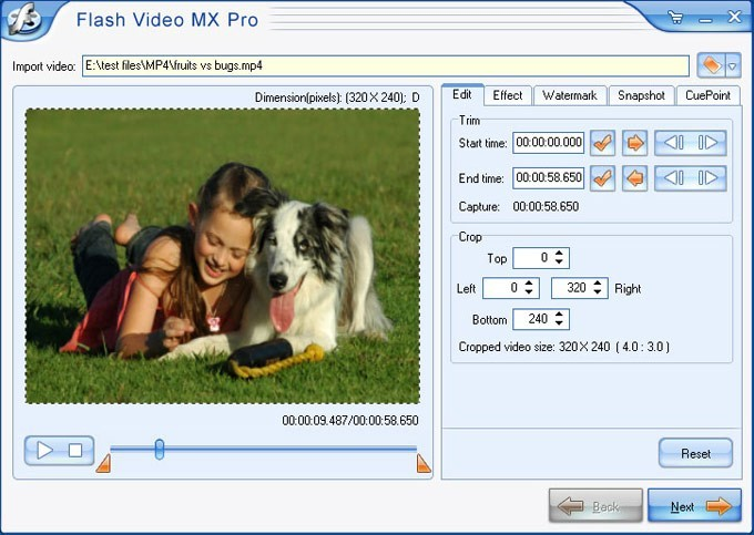 Flash Video MX Pro Download