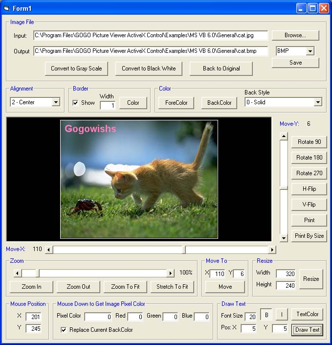 GOGO Picture Viewer ActiveX OCX (Twice Developer) Download