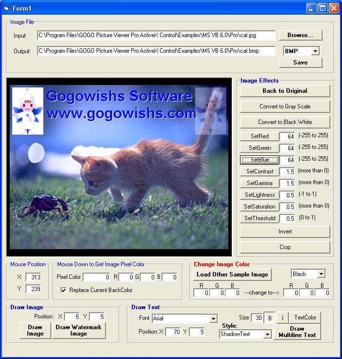 GOGO Picture Viewer Pro ActiveX OCX (Site Wide) Download