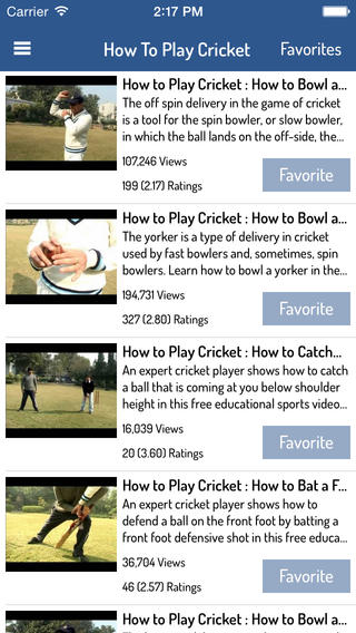 How To Play Cricket Download