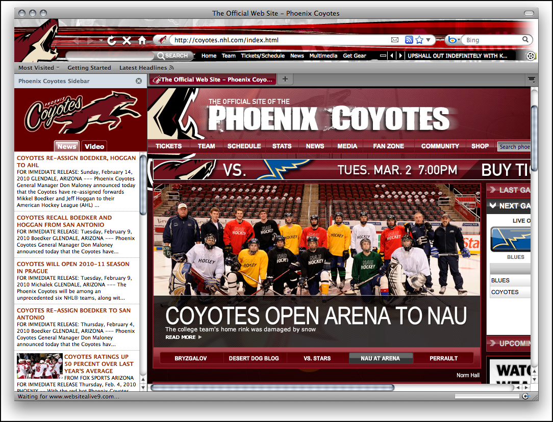NHL Phoenix Coyotes Firefox Theme Download