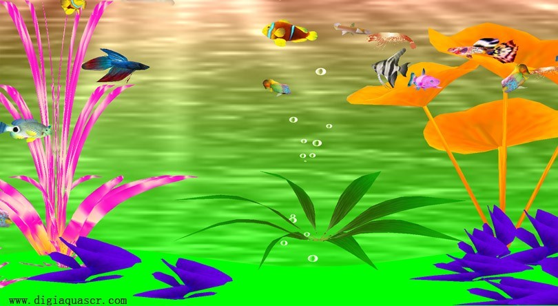 Tropical Aquarium Slots - Try the Free Demo Version