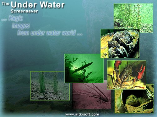 Under Water Screensaver Download